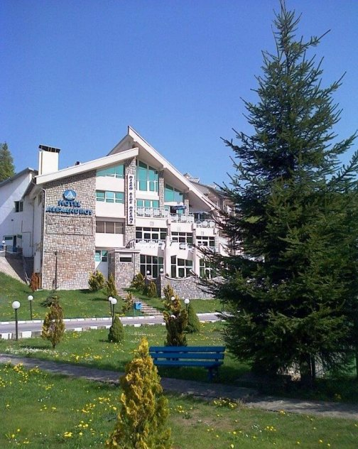 Hotel Alexandros Busteni